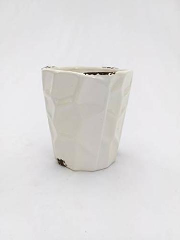 PHALAENOPSIS Spitzen aus Keramiktopf, weiß, echte Pflanze - 2
